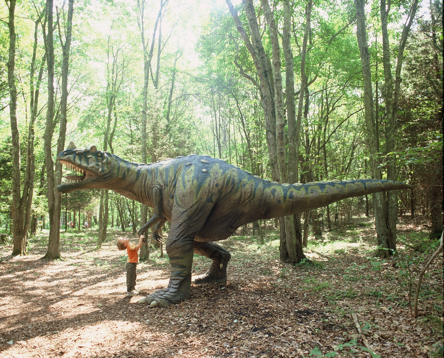 the dinosaur place pitstops for kids