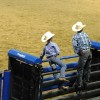 What to do in Cody Wyoming with kids: a night out at the Cody Nite Rodeo