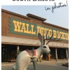 The wonders of Wall Drug, South Dakota (in photos)