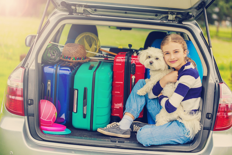 traveling-with-pet