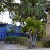 Five family friendly activities in Sarasota